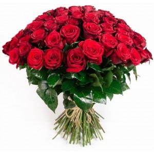 Róże Ciechanów